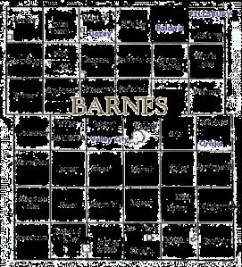 barnes county