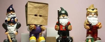 Minnesota Gnome Team
