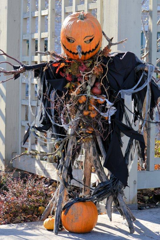 Stick Man Scarecrow