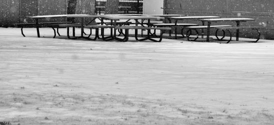 Picnic Tables At Rest Photo by Clarence Holm