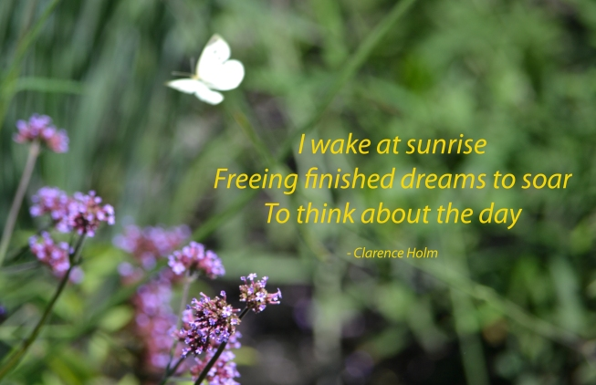 Minnesota Morning Photo & Haiku - Clarence Holm 7/24/2015