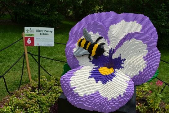 Pansy & Bee Minnesota Arboretum Lego Exhibit Photo - Clarence Holm 7/5/2015