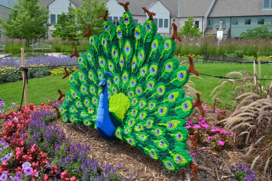 Peacock Minnesota Arboretum Lego Exhibit Photo - Clarence Holm 7/5/2015