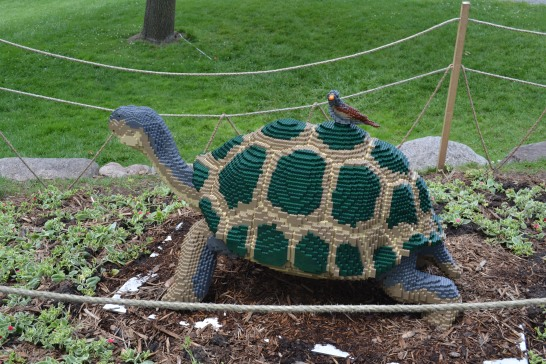 Lego Turtle Minnesota Arboretum Lego Exhibit Photo - Clarence Holm 7/5/2015
