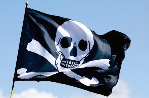 Pirate Flag Free Stock Photo - Public Domain Pictures www.publicdomainpictures.net