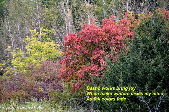 fall b 10 5 2015