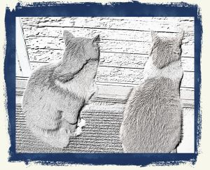 "Charles and Peter ""Purrefed Cat-trievers"""