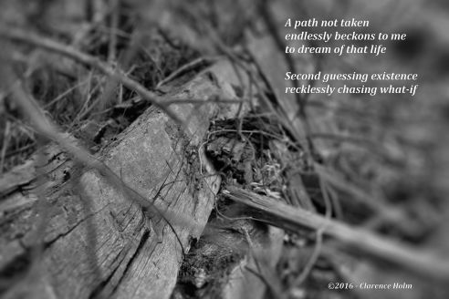 Image and Words ©2016 - Clarence Holm