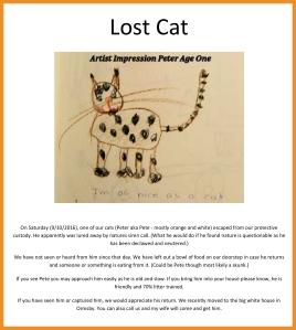 lost-cat-photo