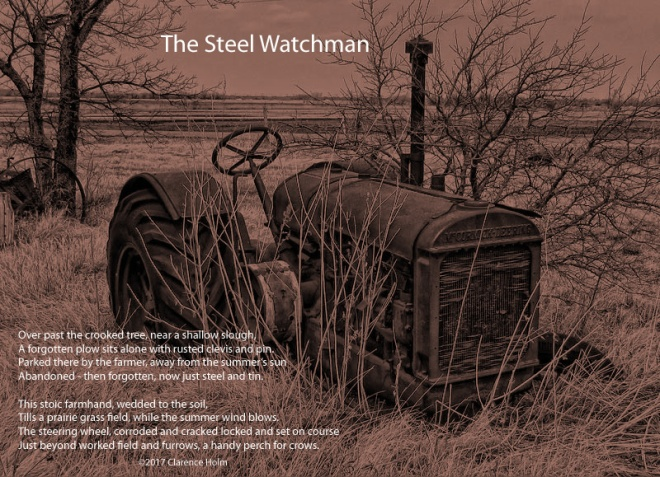 steel-watchman